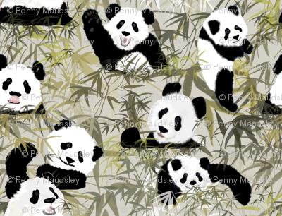 PEEK A BOO PANDAS