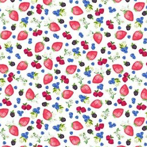 "1/2"" berries on white"