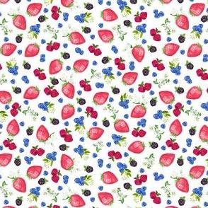 "1/2"" berries on white"
