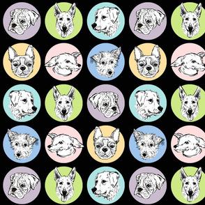 Doggy Spots_Pastel-Black