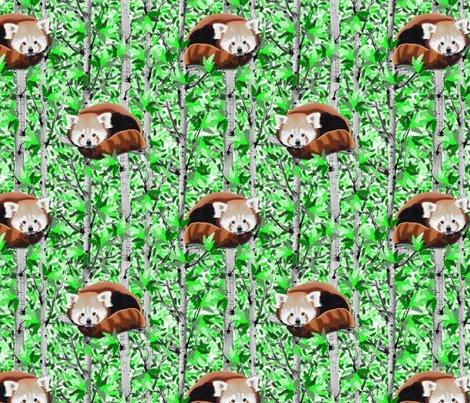 Rrred-pandas_shop_preview