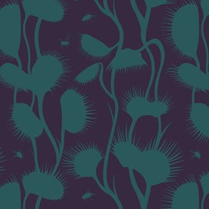 Venus Fly Trap - teal and purple