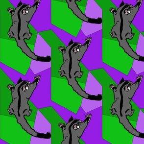 Black Beauty Sugar Glider Green Purple