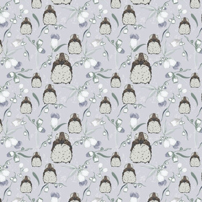 Kookaburra Baby Mist-01