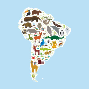 South America sloth anteater toucan lama bat fur seal armadillo boa manatee monkey dolphin Maned wolf raccoon jaguar Hyacinth macaw lizard turtle crocodile penguin Blue-footed booby Capybara