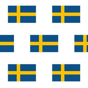 Swedish Flag // Large