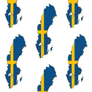 Swedish Flag Overlay // Large