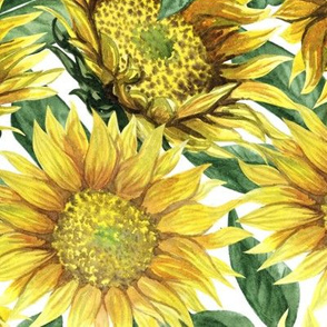 Sunflowers (big scale)