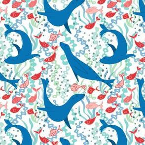 Sea Lion - white background