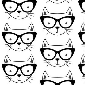 hipster cat face with black glasses