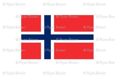 Norwegian Flag // Large