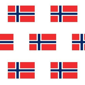 Norwegian Flag // Large