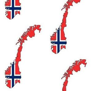 Norwegian Flag Overlay // Large