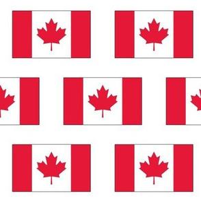 Canadian Flag // Large