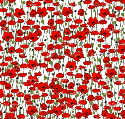 Poppy field - white