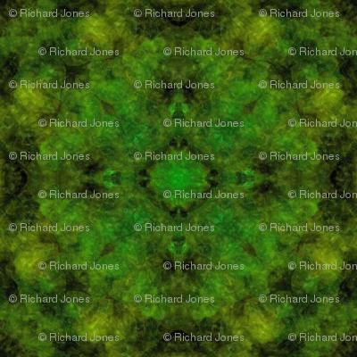 Forest Filter Mandala
