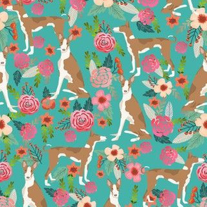 ibizan hound floral pure breed dog fabric teal