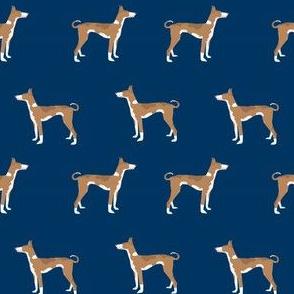 ibizan hound standing pure breed dog fabric navy
