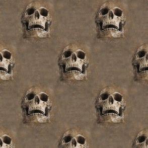 skulls everywhere - brown