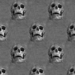 skulls everywhere - dark gray