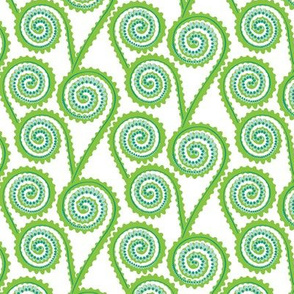 fiddleheads - Green On White