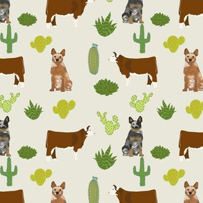 red and blue heeler australian cattle dogs with cattle and cacti