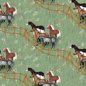 Rrhorses-waiting-at-the-pasture-gate_shop_thumb