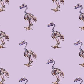 Lavender Dodo