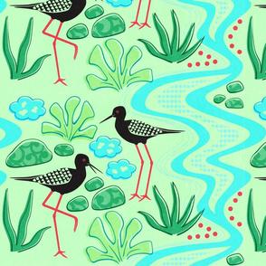 Kaki Birds Aotearoa