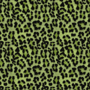 painted mega leopard 2018 spring