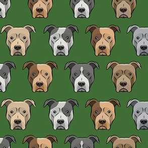 pit bull faces on pine