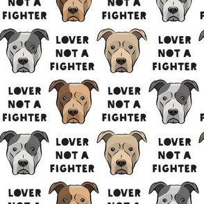 lover not a fighter pit bull on white