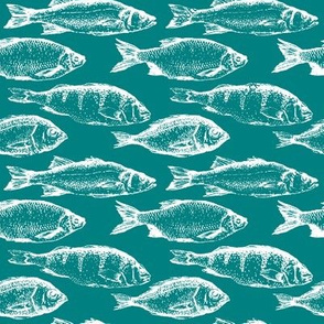 Fish Sketches on Teal // Large