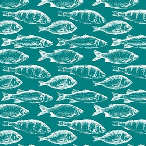 Fish Sketches on Teal // Small
