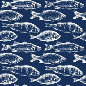 Fish Sketches on Navy // Large