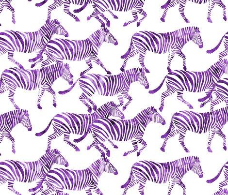 Purple-zebras_shop_preview