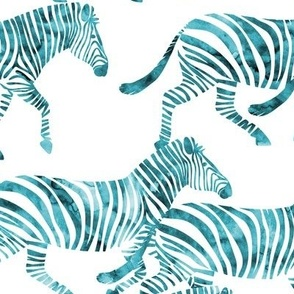 zebras in teal