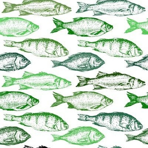 Fish Sketches in Green Shades // Large