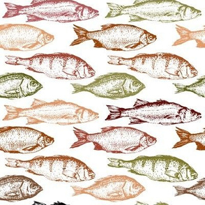 Fish Sketches in Red Shades // Large