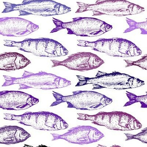 Fish Sketches in Purple Shades // Large