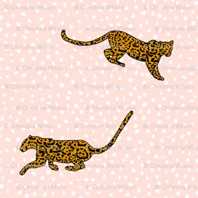 Jaguar Blush
