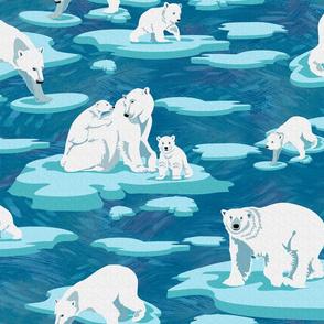 Polar Bears meet on the ice
