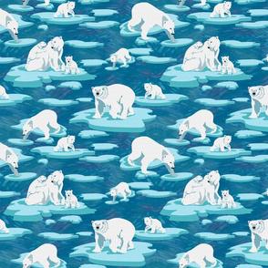 Polar Bears meet on the ice 50