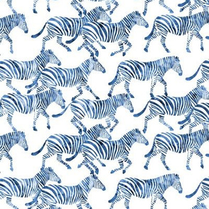 (small scale) zebras in blue