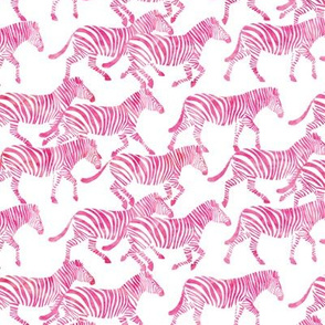 (small scale) zebras in pink