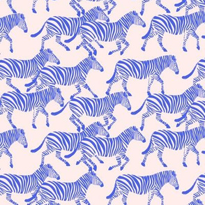 (small scale) zebras in blue on pink