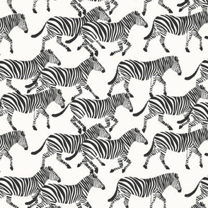 (small scale) zebras