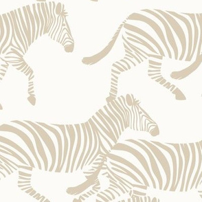 zebras in tan