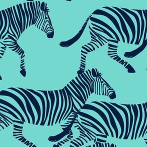 zebras in navy on teal