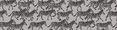 (small scale) zebras on grey